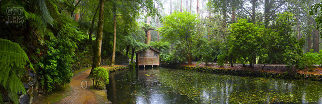 An old cottage in the dandenong ranges