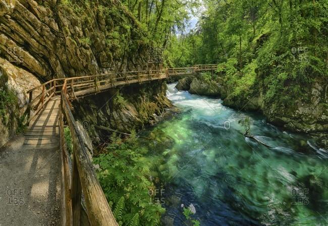 Wooden walkway at vintgar gorge
