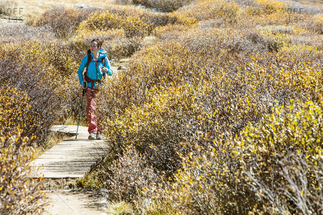 A young female hikes on a trail beneath MT Bierstadt in Colorado