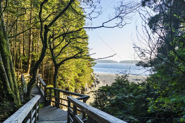 Tonquin park on the canadian west coast, Tofino, British Columbia, Canada