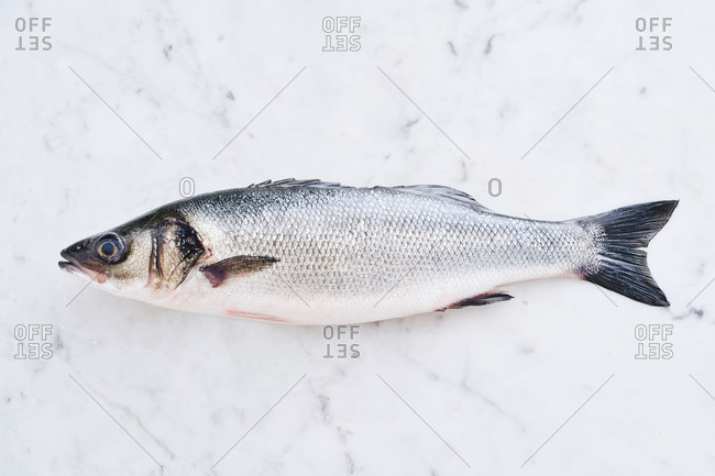 Whole fish on a marble background