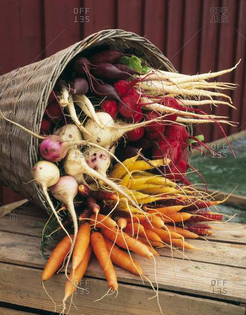 Large group of root vegetables in basket