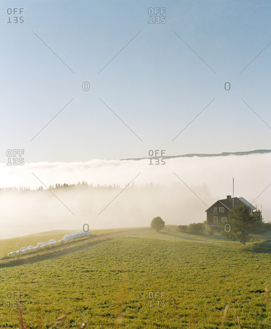 Morning fog over rural scene