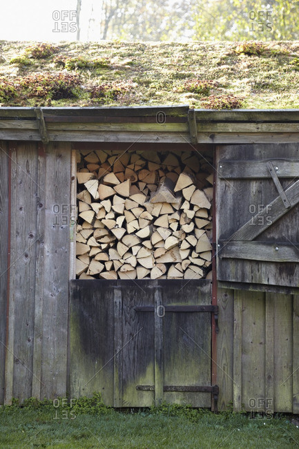 Firewood in shed