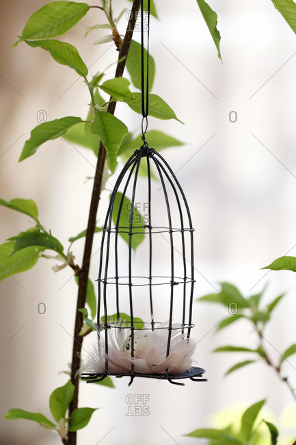 Small birdcage decoration