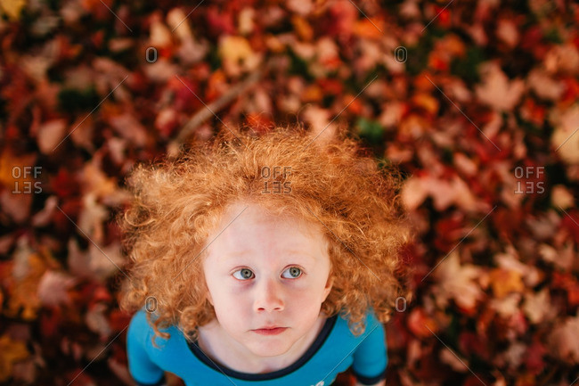 Little boy standing in autumn leaves looking up