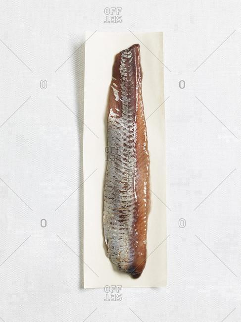 Sweet-pickled herring on paper, studio shot