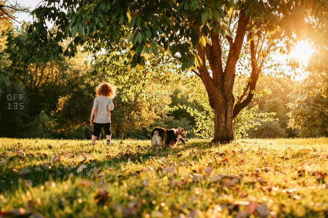 Boy and his dog walking in a yard beneath trees