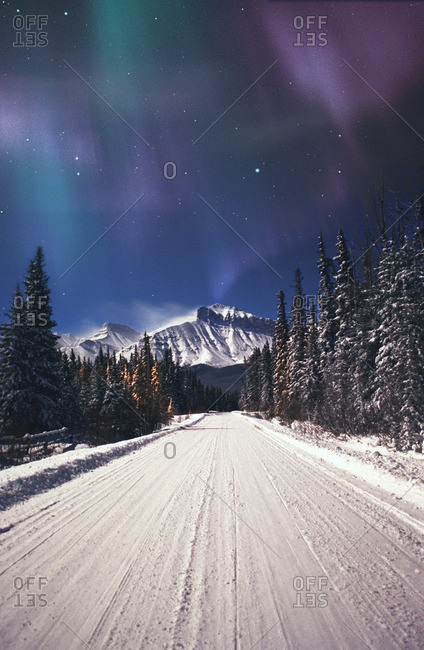 Northern Lights Over A Snowy Road