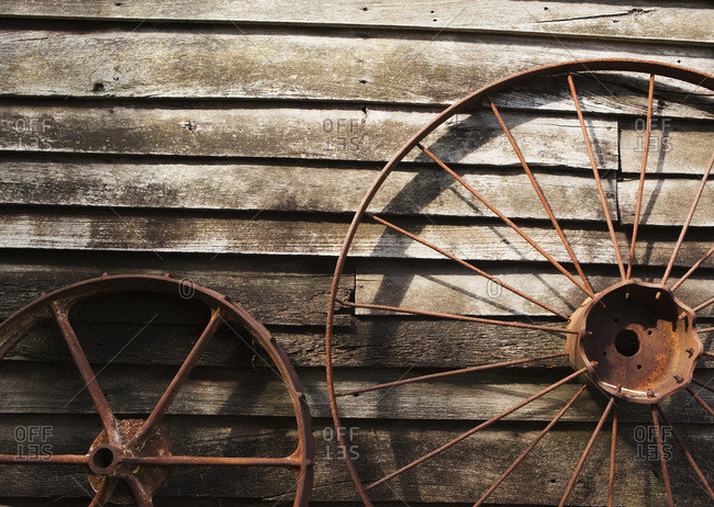 Old Wheels Against A Wooden Wall; Margaret River, West Australia, Australia