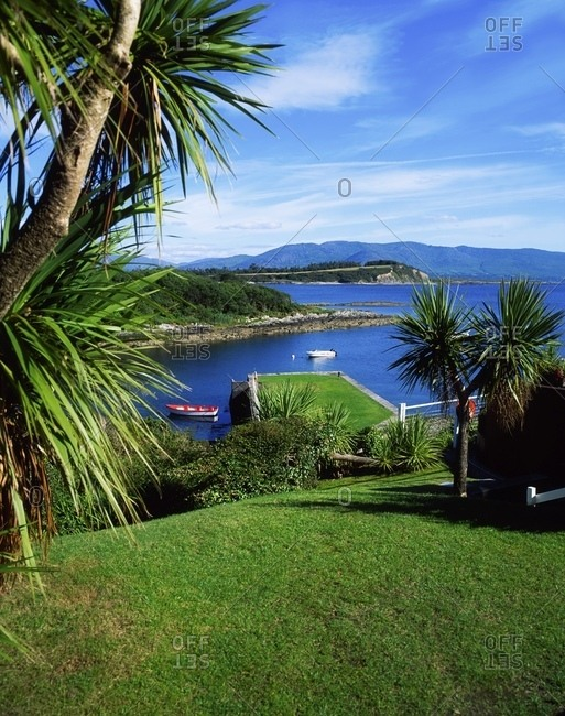 Ocean Front Marina With Palm Trees; Parknasilla, County Kerry, Ireland