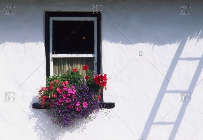 Ireland, Traditional Cottage Windows