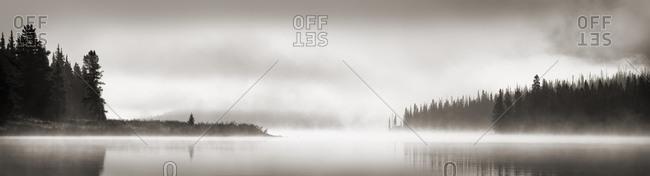 Foggy Scene