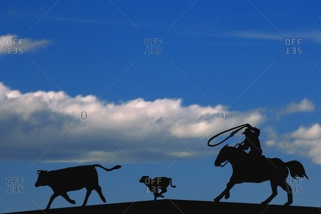 Silhouette Of A Rancher Roping Cattle