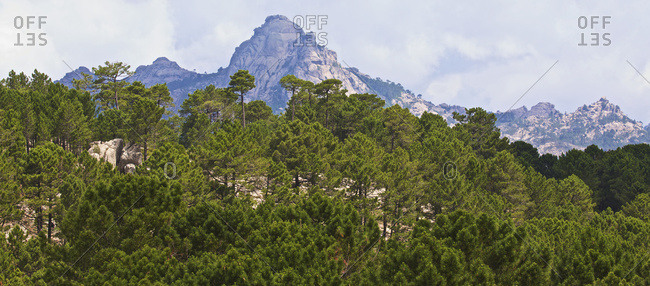 The peaks and forest of the Alta Rocca mountains