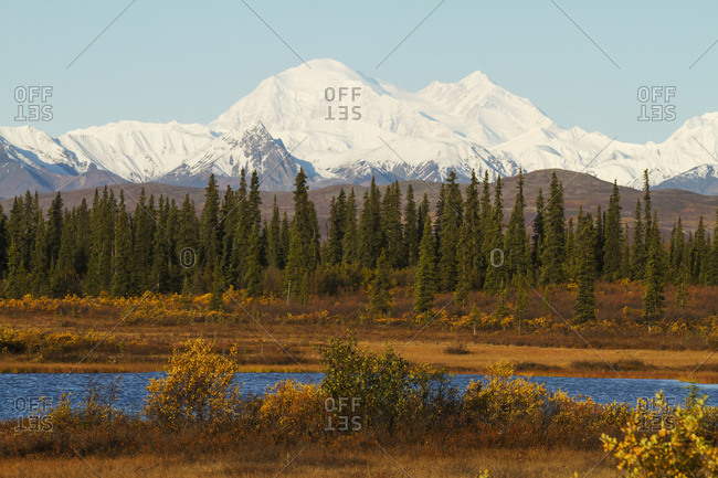Denali towers over a small pond and spruce trees in interior Alaska in autumn, view from the Parks Highway south of Cantwell; Alaska, United States of America