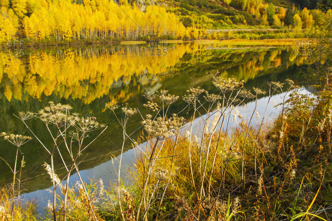 A small pond next to the Seward Highway at about Mile 88 in autumn, south-central Alaska; Alaska, United States of America