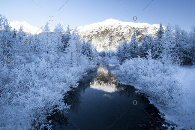 Winter landscape reflecting in creek, Portage Valley, South-central Alaska, USA