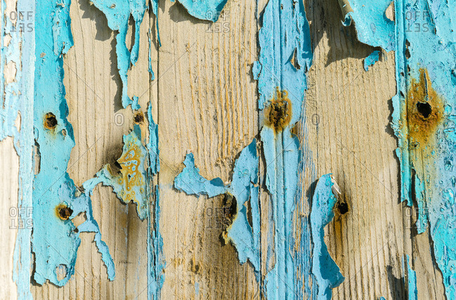 Texture of old wood with worn blue paint and rusty nails