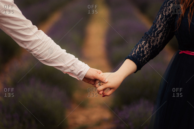 Couple's clasped hands in lavender field