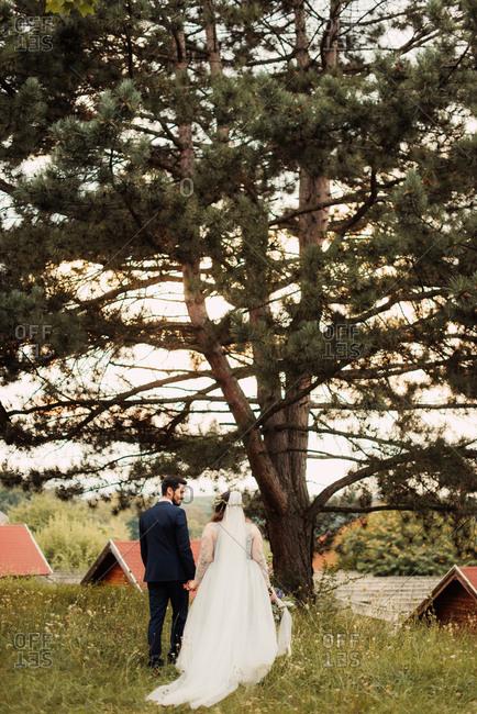 Bride and groom walking in pastoral setting