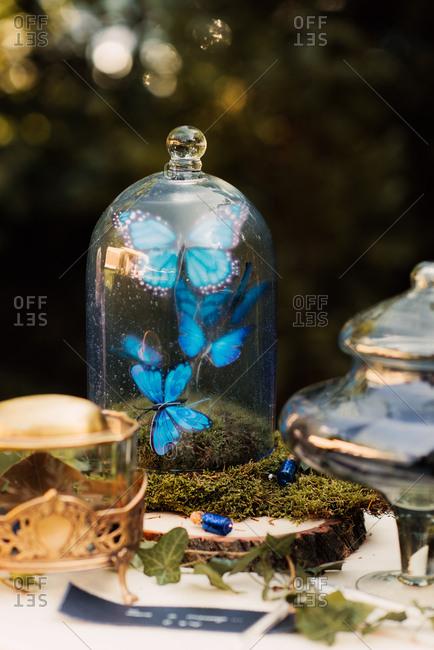 Blue butterflies in glass for wedding