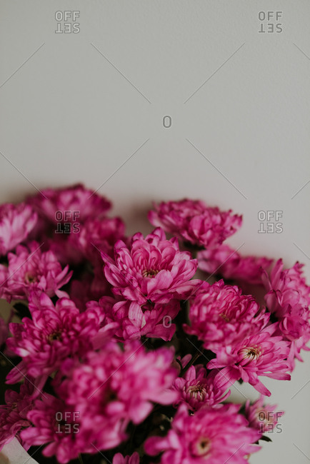 Close up of bouquet of pink flowers