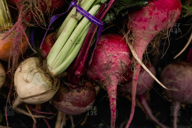 Close-up of fresh root vegetables