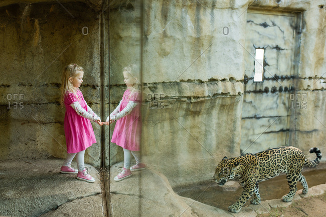 Girl watching a leopard in zoo