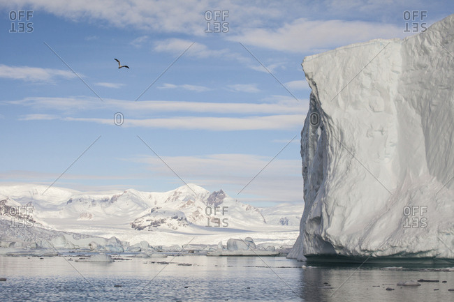 Iceberg sculptures in Marguerite Bay, south of the Antarctic Circle