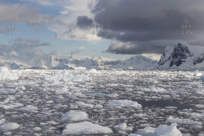 Bergy bits and brash ice fill Andvord Bay on the Antarctic Peninsula