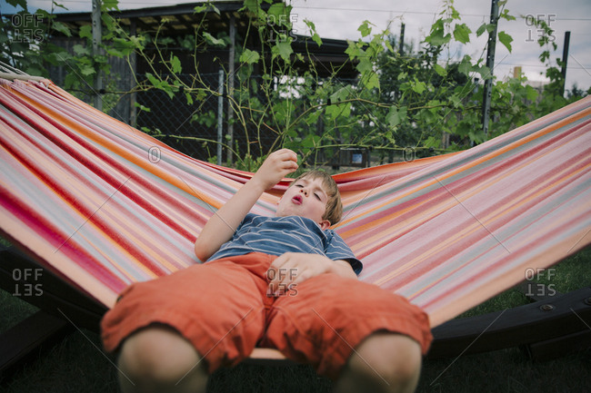 Boy lounging in hammock eating strawberry