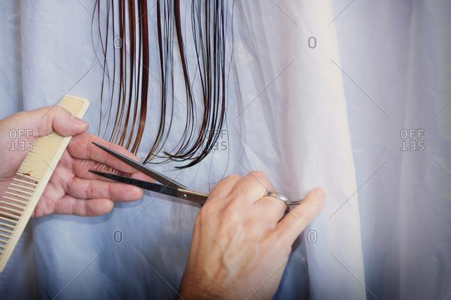 Hairdresser cutting long straight hair scissors
