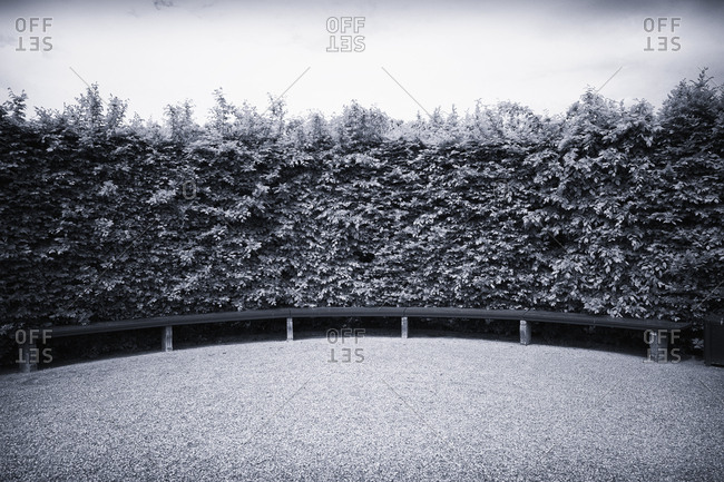 Large hedge bush stone park bench black white