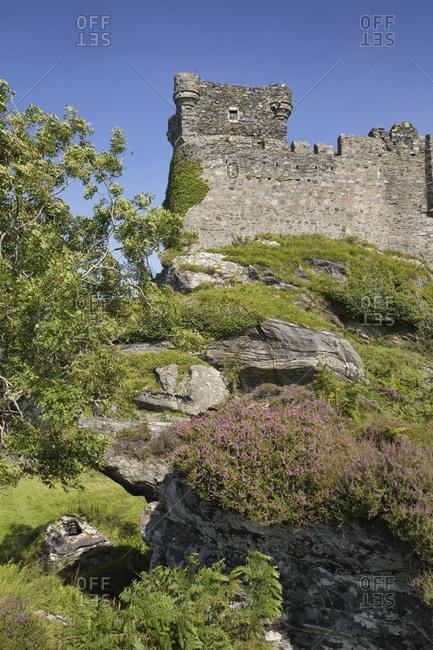 Castle Tioram Scotland ruin fortress heather cliff
