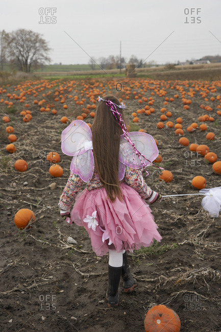 Girl Dressed as Fairy in Pumpkin Patch