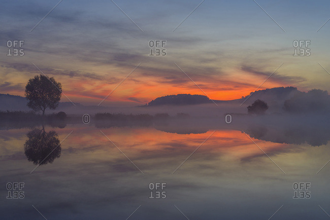 Landscape with Tree Reflecting in Lake at Dawn, Drei Gleichen, Ilm District, Thuringia, Germany