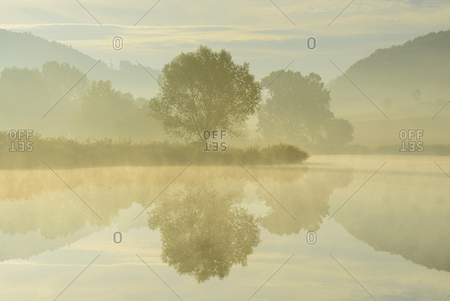Lake with Trees and Morning Mist, Drei Gleichen, Ilm District, Thuringia, Germany
