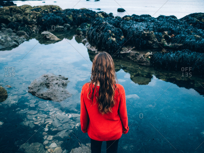 Rear view of long-haired brunette woman in red standing at water with reef.