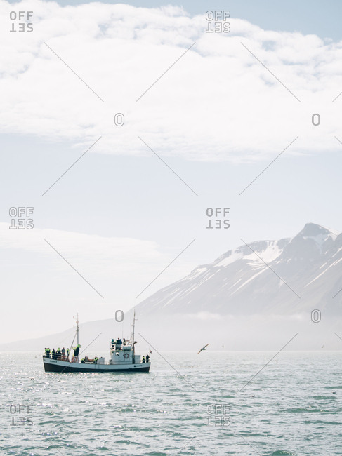 Iceland - June 3, 2016: Small boat with birds flying nearby floating near the mountains.