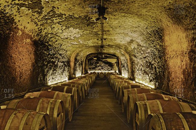 Wine barrels in cave cellar