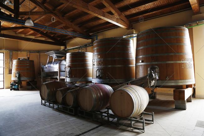 Wine barrels in vineyard storehouse