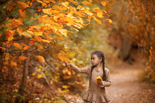 Girl picking fall leaf in forest setting
