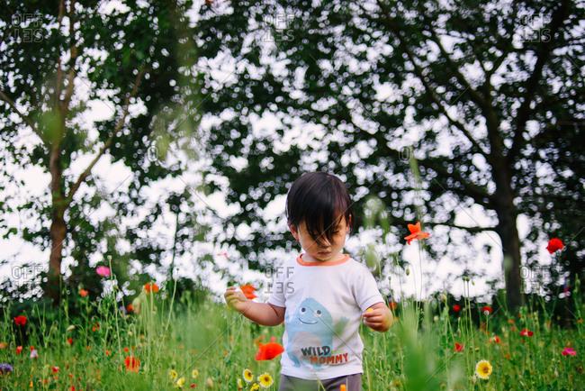 Girl exploring field of wildflowers