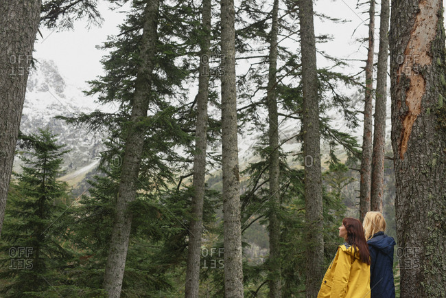 Travel girl friends having fun hiking adventure vacation in green forest amazing view