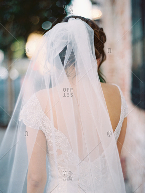 Back of a bride in a lace dress and veil