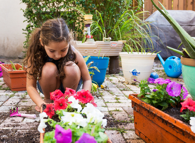 Little girl on a patio helping plant flowers
