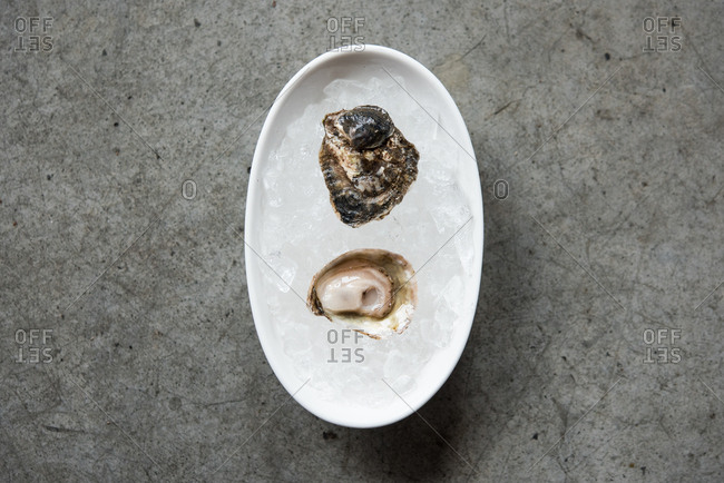 Shucked oyster on ice