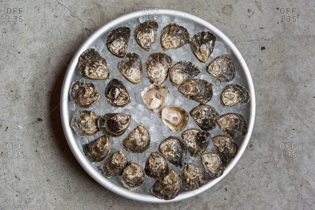 Overhead view of a platter of oysters on ice