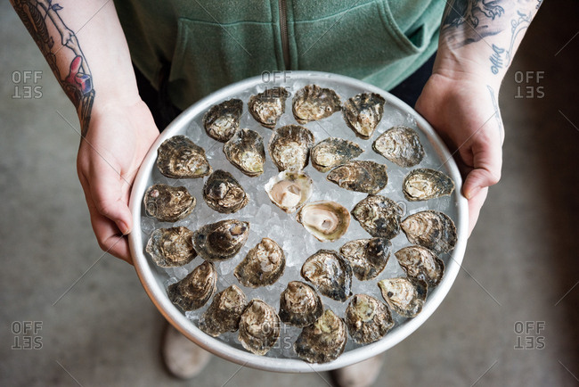 Person holding platter of oysters on ice